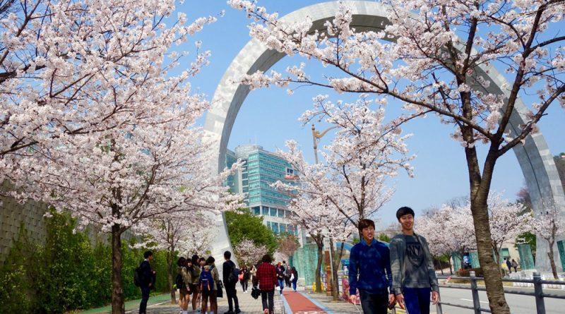 Du học Hàn Quốc là gì? Cơ hội việc làm sau khi tốt nghiệp