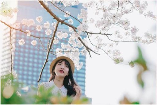 Du học Nhật có đẹp như bạn nghĩ?