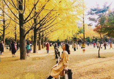 Du học Hàn Quốc học ngành gì?