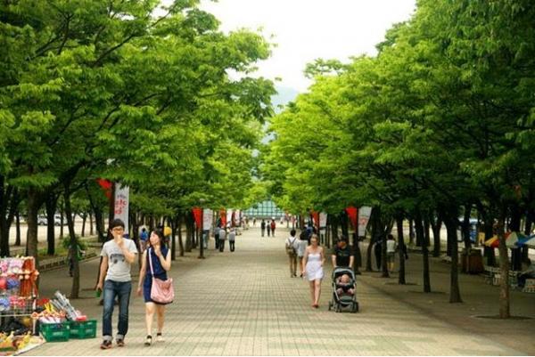 Vì sao nên lựa chọn Seoul để đi du học?