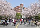 Vì sao nên du học Hàn Quốc tại Seoul?
